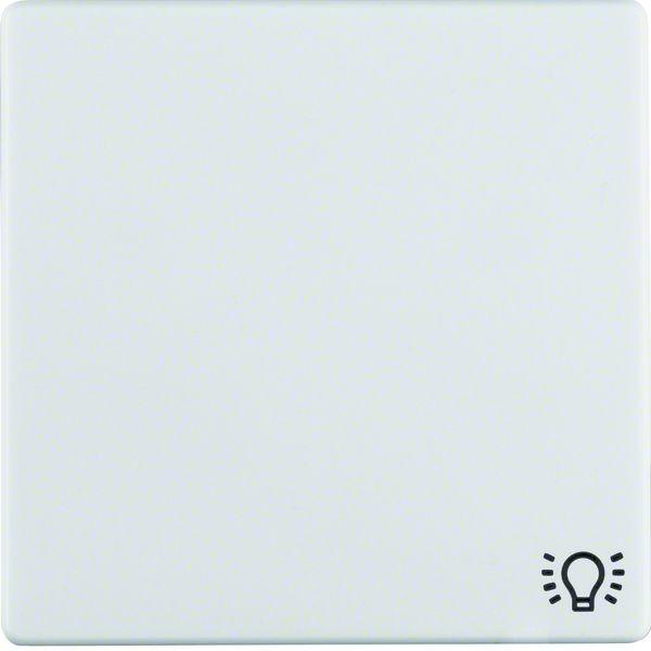 Berker Wippe mit Aufdruck Symbol Licht Q.1/Q.3 16206049 | elektromax24