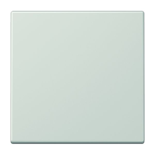 Jung LS 990 LG Wippe für Wippschalter Tastschalter Taster und Taster BA  1fach
